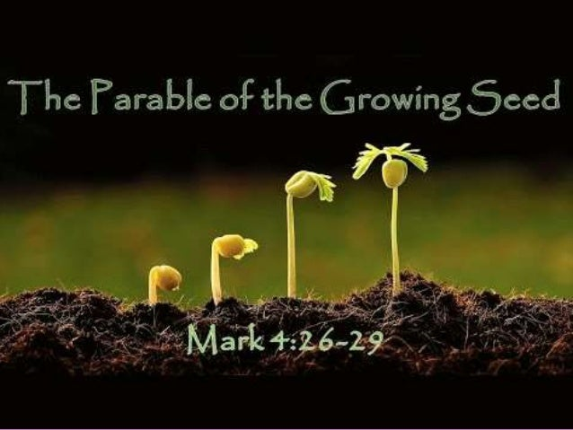 Parable of the Seed Growing!