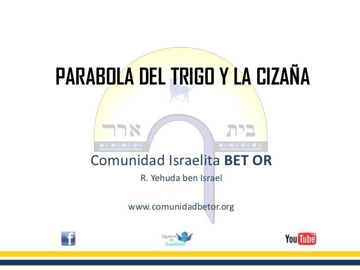 PARABOLA DEL TRIGO Y LA CIZAÑA    Comunidad Israelita BET OR           R. Yehuda ben Israel         www.comunidadbetor.org