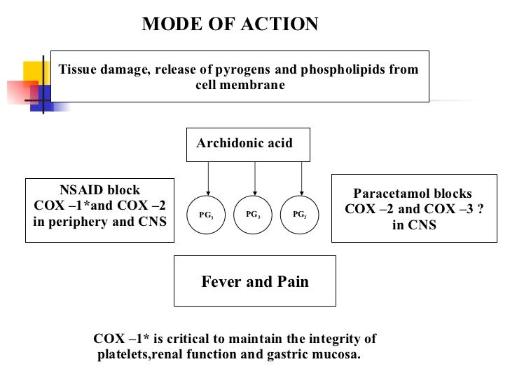 corticosteroid mechanism of action allergy