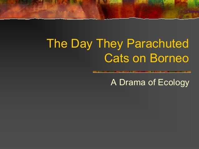 The Day They Parachuted Cats on Borneo A Drama of Ecology