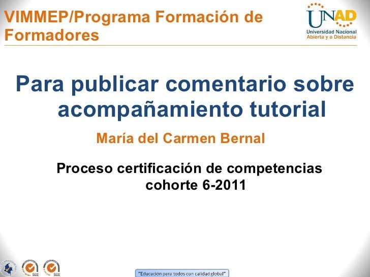 VIMMEP/Programa Formación de Formadores  <ul><li>Para publicar comentario sobre acompañamiento tutorial </li></ul>Proceso ...