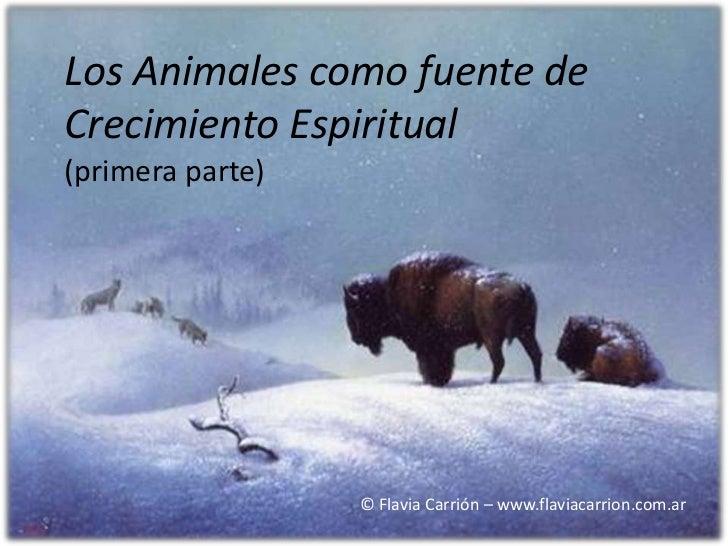 Los Animales como fuente deCrecimiento Espiritual(primera parte)                  © Flavia Carrión – www.flaviacarrion.com...