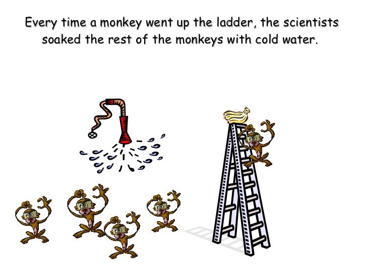 A Story About 5 Monkeys