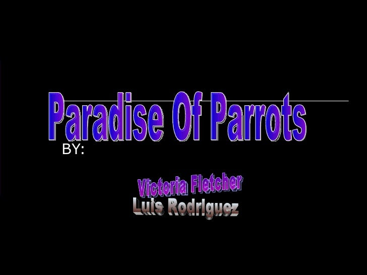 BY: Paradise Of Parrots  Victoria Fletcher Luis Rodriguez Jeremiah MCclinton