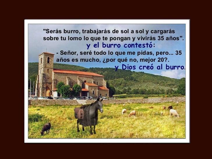 """""""Serás burro, trabajarás de sol a sol y cargarás sobre tu lomo lo que te pongan y vivirás 35 años"""". y el burro c..."""