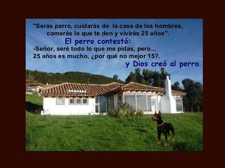"""""""Serás perro, cuidarás de  la casa de los hombres, comerás lo que te den y vivirás 25 años"""". El perro contestó: ..."""