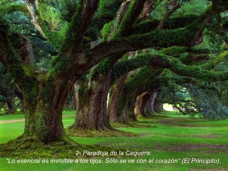 """2- Paradoja de la Ceguera: """" Lo esencial es invisible a los ojos. Sólo se ve con el corazón"""" (El Principito)."""