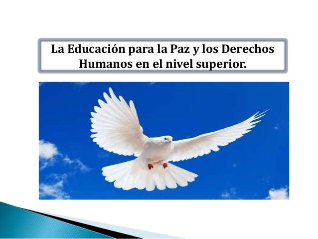 La Educación para la Paz y los Derechos Humanos en el nivel superior.