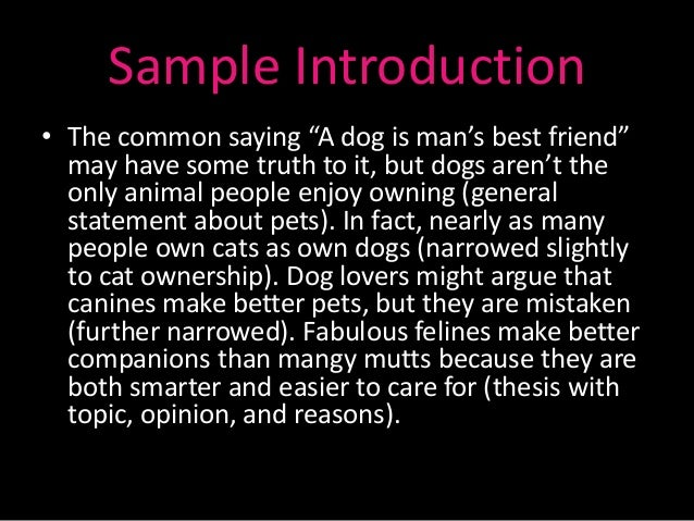 pet essay sample