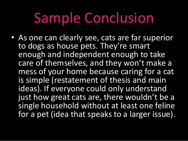 Cats vs dogs comparative essay