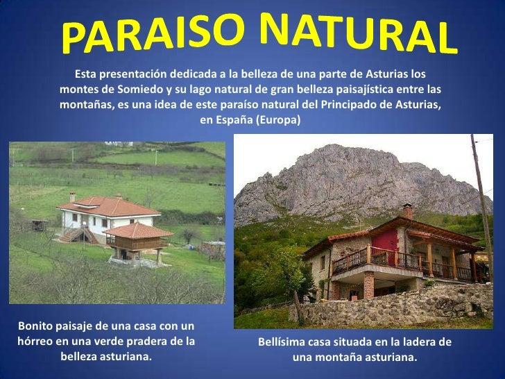 PARAISO NATURAL<br />Esta presentación dedicada a la belleza de una parte de Asturias los montes de Somiedo y su lago natu...