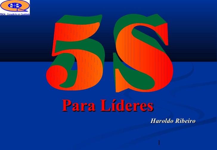 Para Líderes           Haroldo Ribeiro               1
