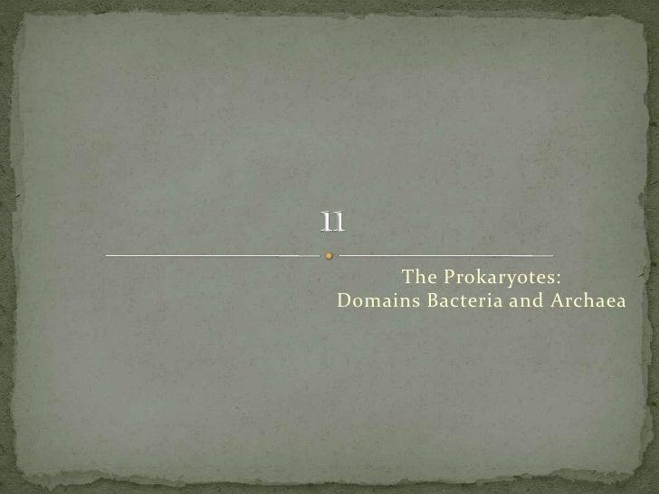 The Prokaryotes:Domains Bacteria and Archaea<br />11<br />