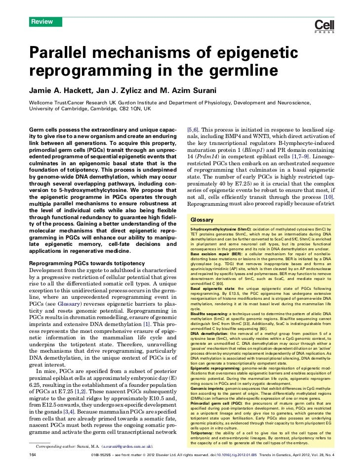 ReviewParallel mechanisms of epigeneticreprogramming in the germlineJamie A. Hackett, Jan J. Zylicz and M. Azim SuraniWell...