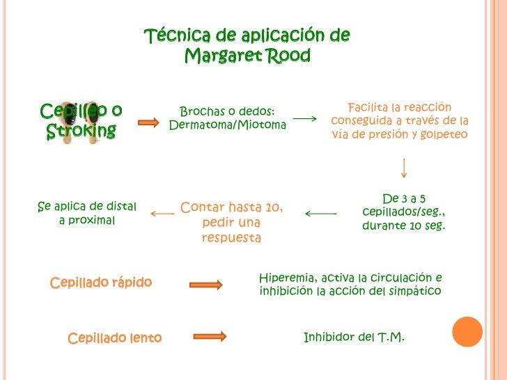 Técnica de aplicación de Margaret Rood<br />Cepilleo o Stroking<br />Facilita la reacción conseguida a través de la vía de...