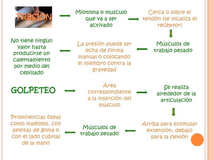 Miotoma o musculo que va a ser activado<br />Cerca o sobre el tendón (se localiza el receptor)<br />PRESION<br />No tiene ...