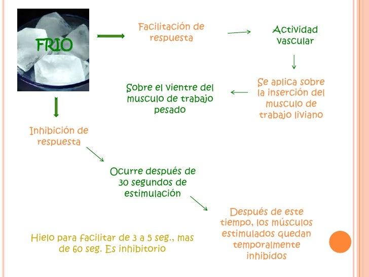 Facilitación de respuesta<br />Actividad vascular<br />FRIO<br />Se aplica sobre la inserción del musculo de trabajo livia...