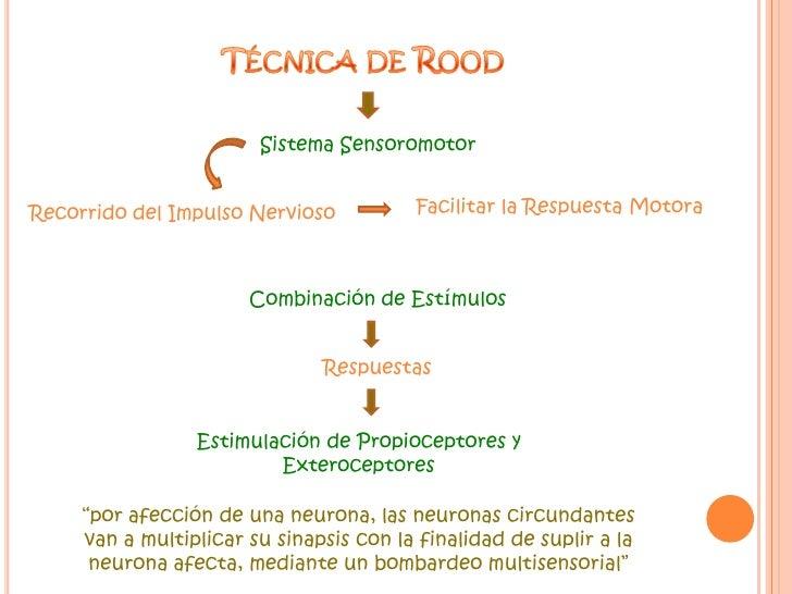 Técnica de Rood<br />Sistema Sensoromotor <br />Facilitar la Respuesta Motora<br />Recorrido del Impulso Nervioso<br />Com...