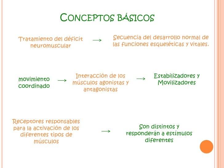 Conceptos básicos<br />Secuencia del desarrollo normal de las funciones esqueléticas y vitales.<br />Tratamiento del défic...