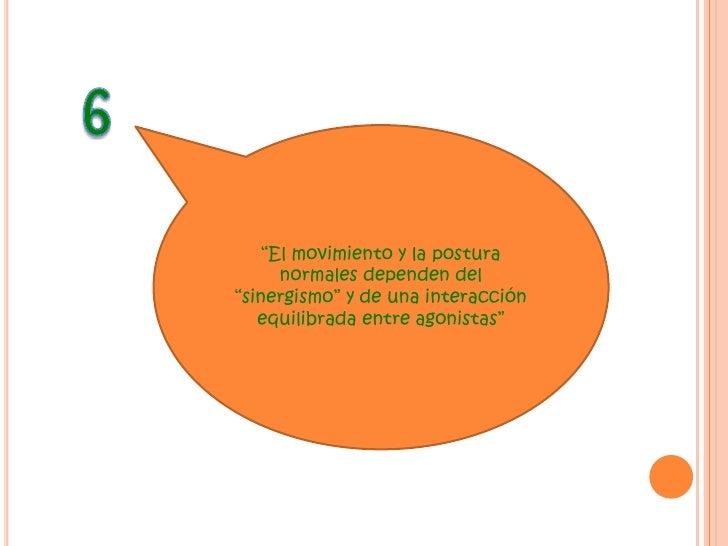 """5<br />""""La actividad dirigida a un objetivo está formada de movimientos inversos""""<br />"""