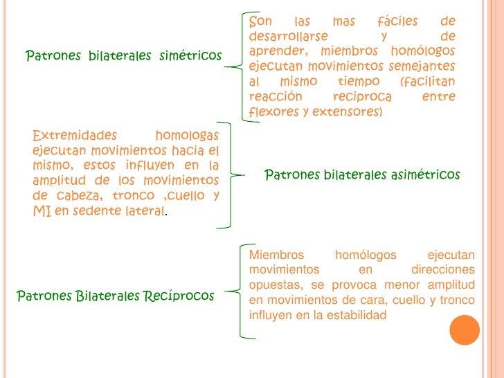 Patrones Diagonales<br />Para cada parte del cuerpo importante hay dos diagonales de movimiento<br />Hay 5 factores que lo...