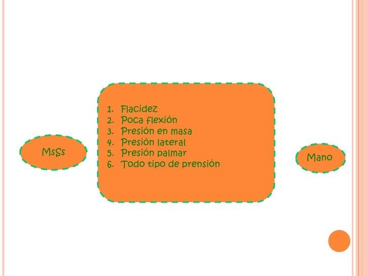 Fases de recuperación <br />1.Flacidez<br />2. Desarrollo de las sinergias <br />3. Sinergias afectadas <br />4. Movimient...