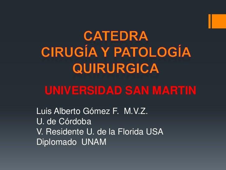 UNIVERSIDAD SAN MARTINLuis Alberto Gómez F. M.V.Z.U. de CórdobaV. Residente U. de la Florida USADiplomado UNAM