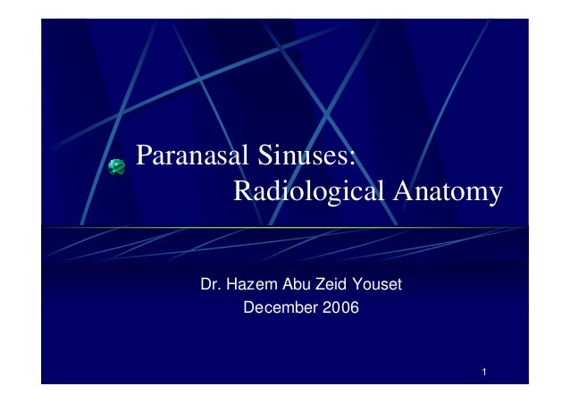 Paranasal sinuses ct anatomy
