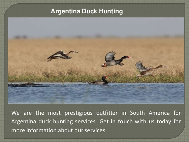 Argentina Duck Hunting We are the most prestigious outfitter in South America for Argentina duck hunting services. Get in ...