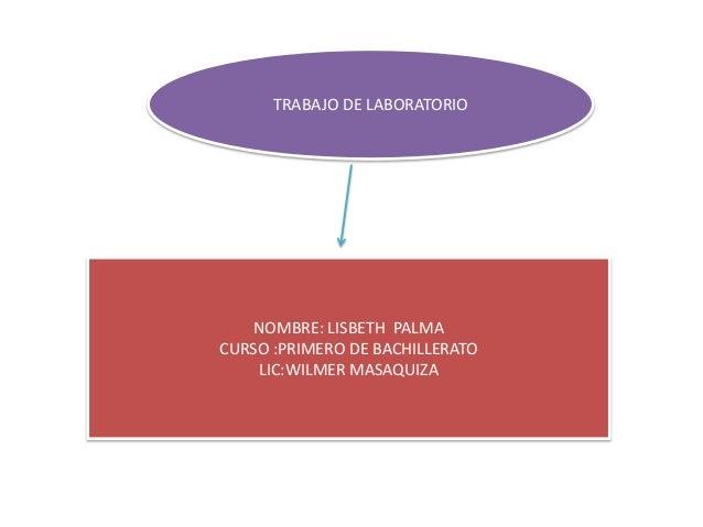 TRABAJO DE LABORATORIO  NOMBRE: LISBETH PALMA CURSO :PRIMERO DE BACHILLERATO LIC:WILMER MASAQUIZA