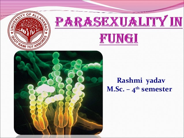 Parasexuality in fungi ppt