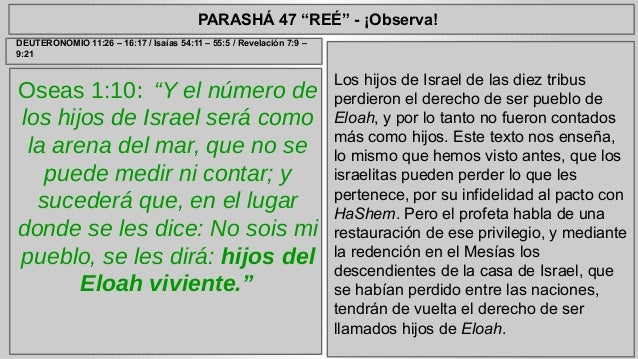 """PARASHÁ 47 """"REÉ"""" - ¡Observa!  Oseas 1:10: """"Y el número de  los hijos de Israel será como  la arena del mar, que no se  pue..."""