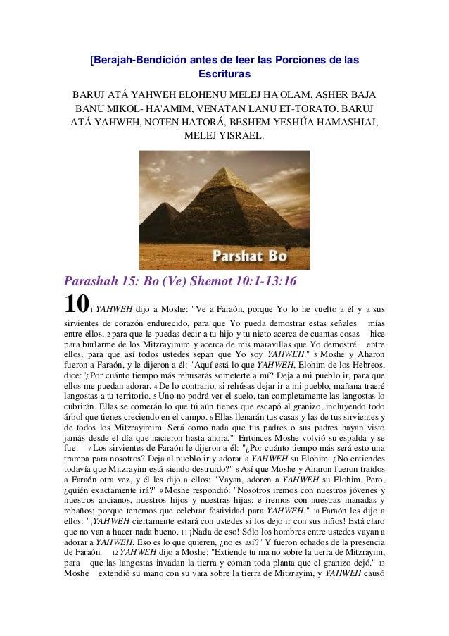 Parasha nº 15 Slide 3