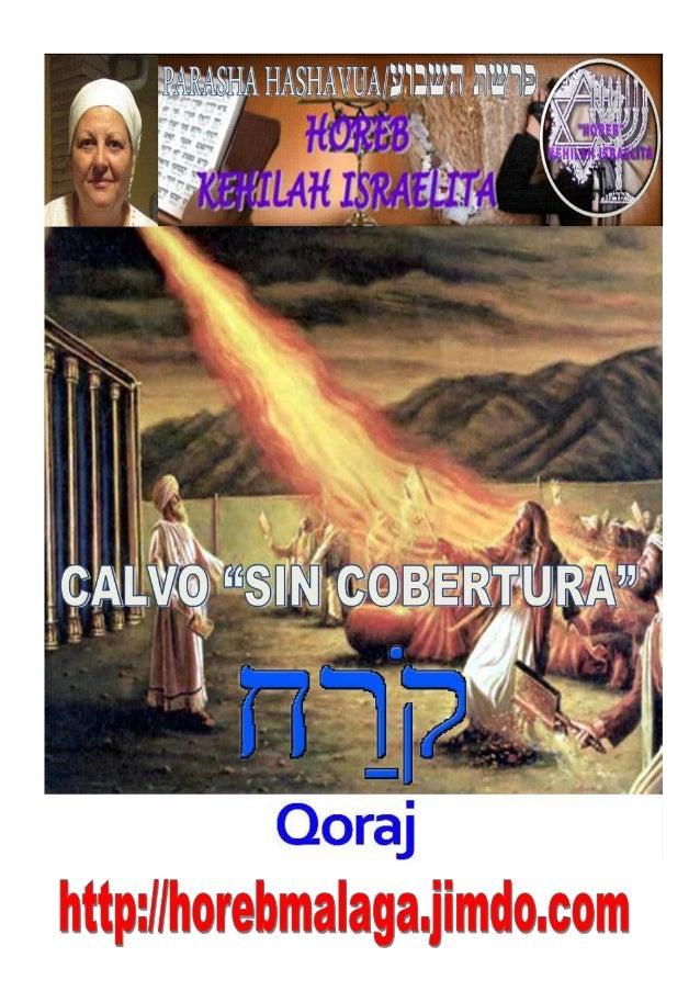 """קרחPARASHÁ Nº 38 KÓRAJ (CALVO """"SIN COBERTURA"""") Mes 4º TAMUZ תמוז (Calendario Hebreo) (08-06-2013) ¡A los llamados de Y..."""