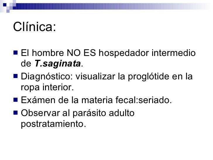 Clínica: <ul><li>El hombre NO ES hospedador intermedio de  T.saginata . </li></ul><ul><li>Diagnóstico: visualizar la progl...