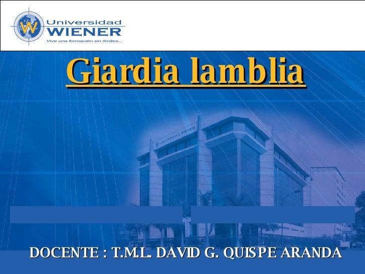 Giardia lamblia     DOCENTE : T.M.L. DAVID G. QUIS PE ARANDA