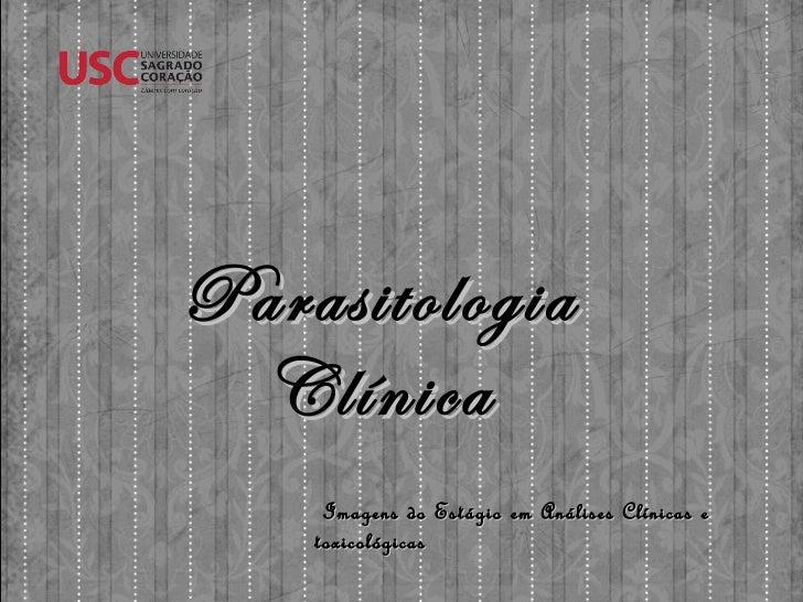 Imagens do Estágio em Análises Clínicas e toxicológicas Parasitologia Clínica