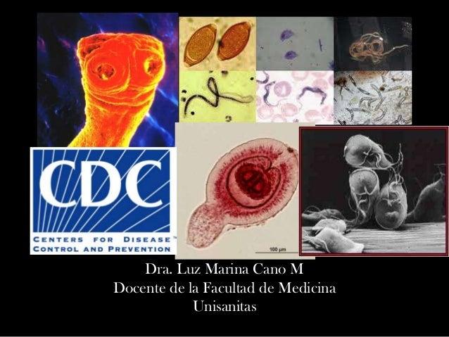 Dra. Luz Marina Cano M Docente de la Facultad de Medicina Unisanitas