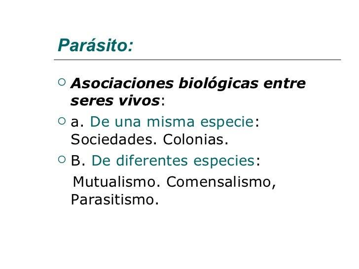 Parasitos Generaridades Slide 3