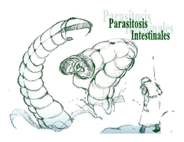 Parasitosis Intestinales Humanas