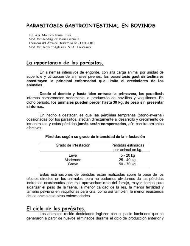 PARASITOSIS GASTROINTESTINAL EN BOVINOS Ing. Agr. Montico María Luisa Med. Vet. Rodríguez María Gabriela Técnicos del Área...