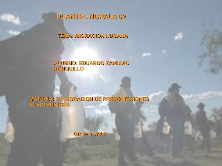 PLANTEL NOPALA 02 TEMA: MIGRACION HUMANA ALUMNO: EDUARDO ZAMUDIO RONQUILLO MATERIA: ELABORACION DE PRESENTACIONES ELECTRON...