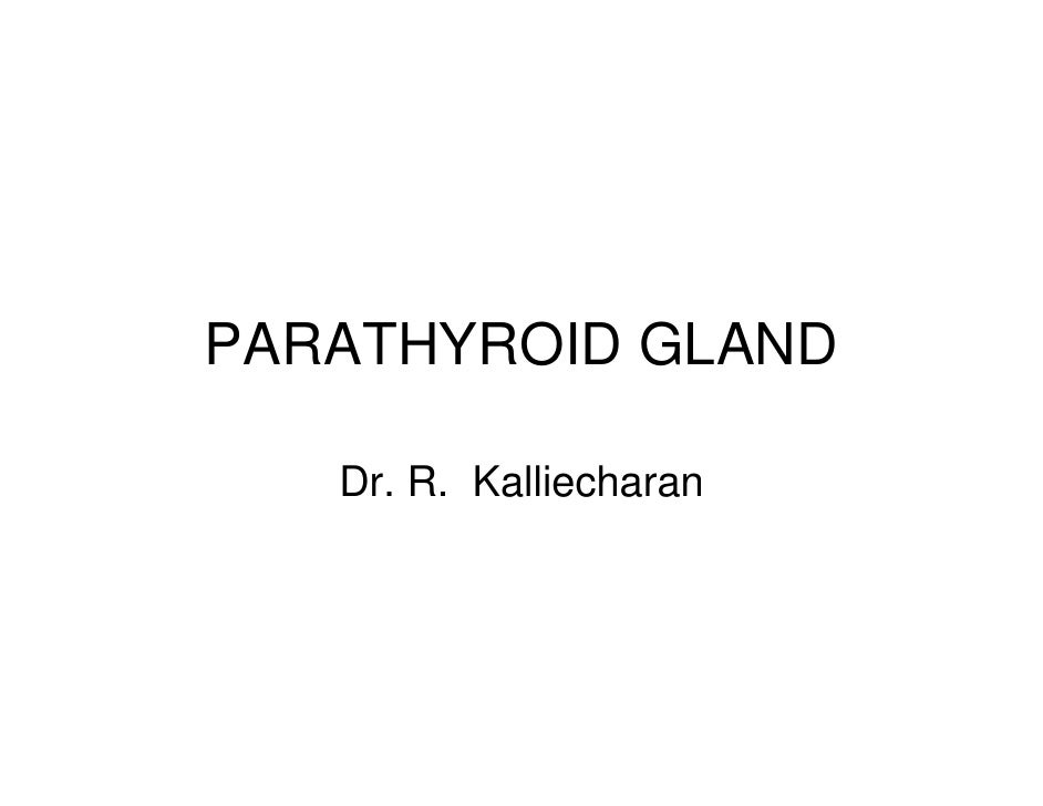 Parathyroid Gland