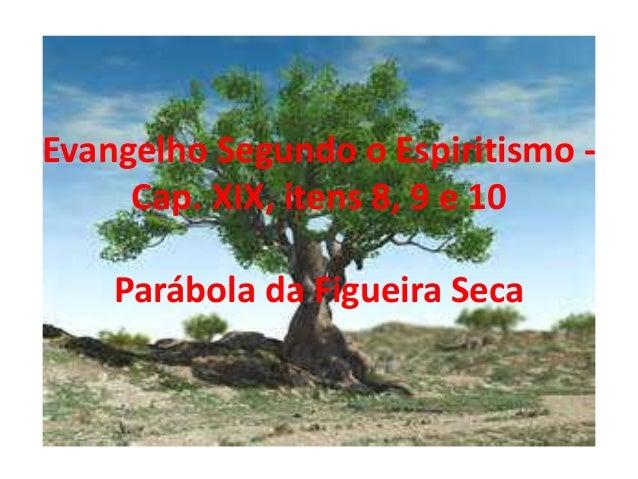 Evangelho Segundo o Espiritismo - Cap. XIX, itens 8, 9 e 10 Parábola da Figueira Seca