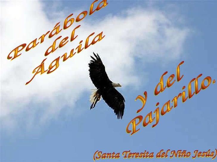 y del  Pajarillo.  Parábola  del  Águila (Santa Teresita del Niño Jesús)