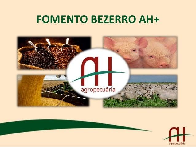 FOMENTO BEZERRO AH+