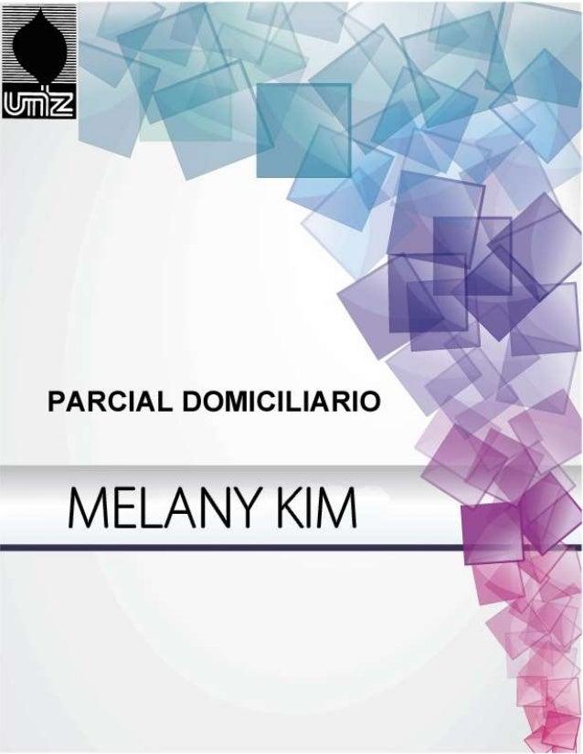 Melany Kim DNI: 36.294.993 Lic. en Publicidad COMUNICACIÓN VISUAL
