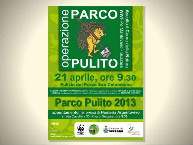 Parco pulito 2013