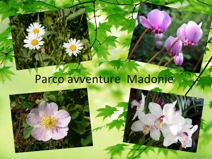 Parco avventure Madonie