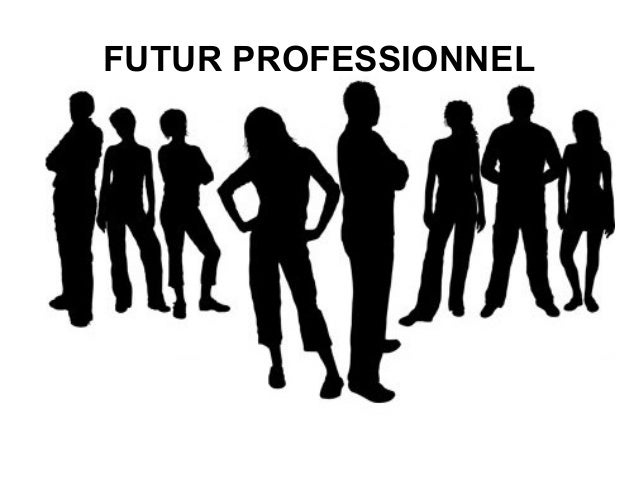 FUTUR PROFESSIONNEL